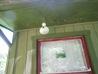 gourd wren house