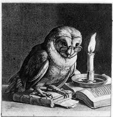 night owl staying up late